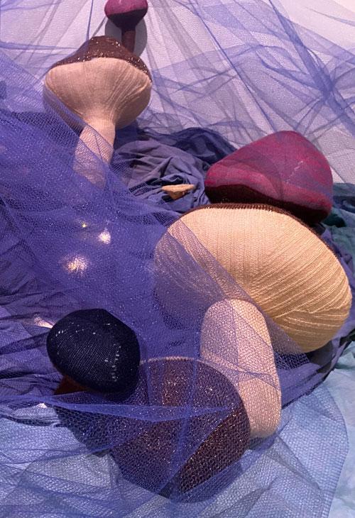 Big Soft Fungi